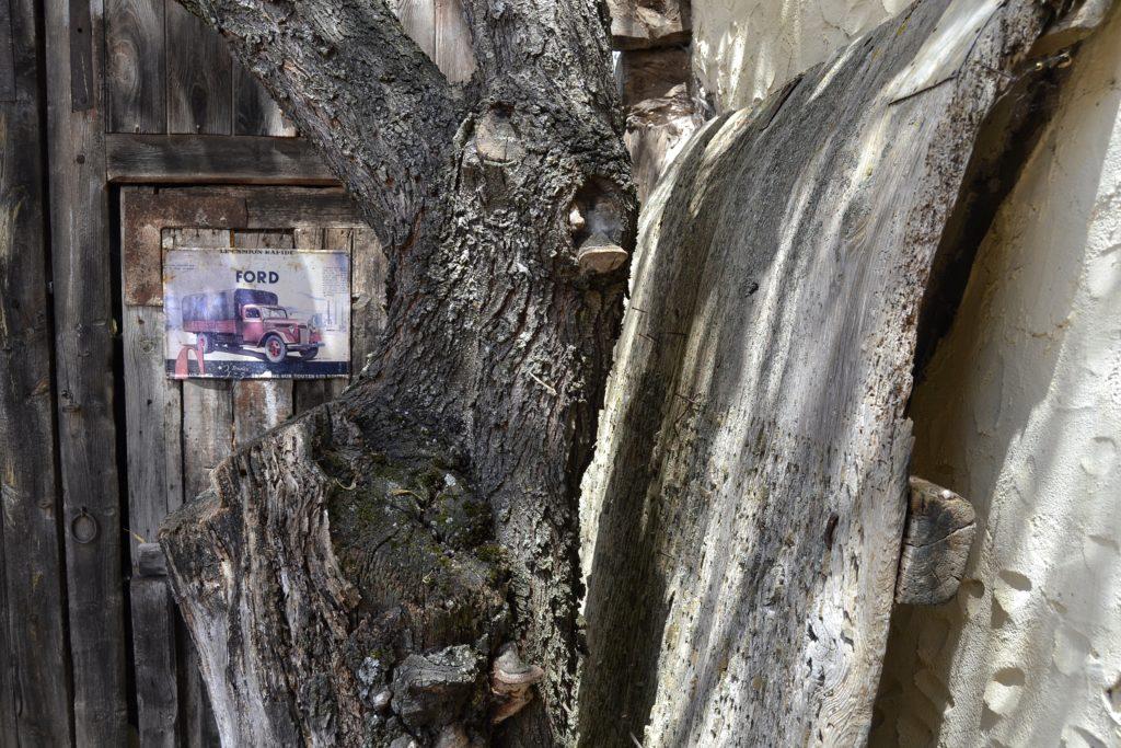 ¿Que ver en Quintanilla del agua? Daremos TIPS sobre una visita fantastica a un pueblo singural y único EL TERRITORIO ATLANZA